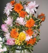 multicolour flower